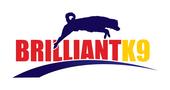 brilliantk9 Coupons