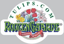Tulips.com Coupons